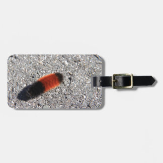 Wooly Wooly Worm Bag Tag