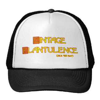 Word Play: Vintage Flatulence Trucker Hat