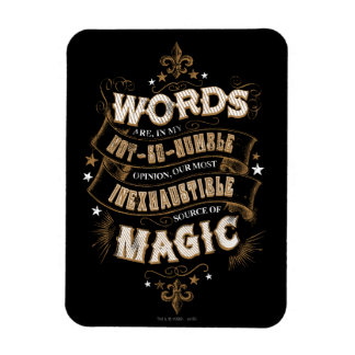 Words Are Our Most Inexhaustible Source Of Magic Magnet
