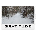 Words Of Wisdom:  Gratitude Cards