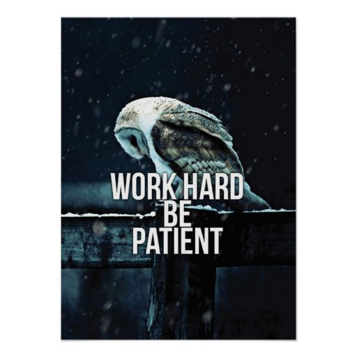 Work Hard, Be Patient - Motivational Poster