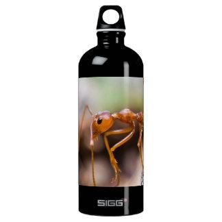 Worker Ant Closeup Aluminum Water Bottle