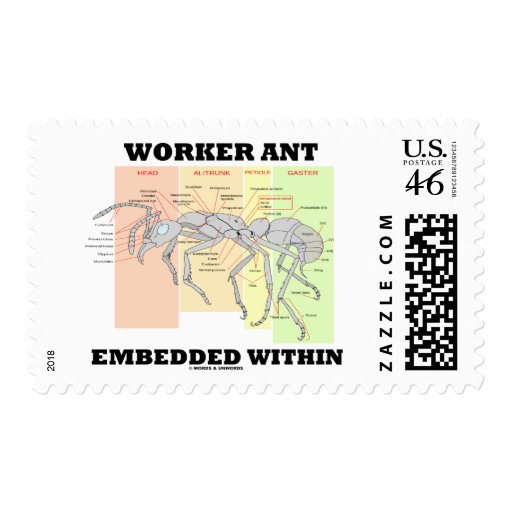 Worker Ant Embedded Within Ant Worker Morphology Stamp