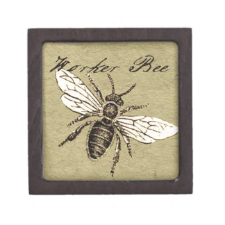 Worker Bee Vintage Drawing Artwork Print Gift Box