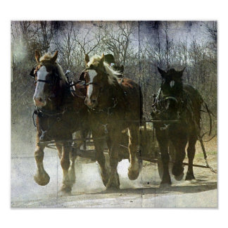 Working Amish Horses Poster