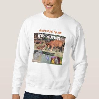 Working Australian Shepherds agility disk Sweatshirt