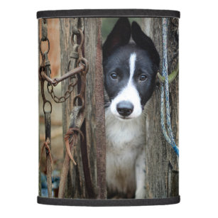Dog lamp shades zazzle working dog lamp shade aloadofball Gallery