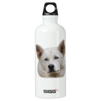 working dog portrait. aluminum water bottle