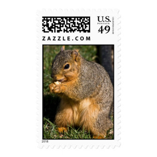 Working For Peanuts Stamp