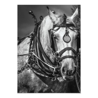 Working Horse Invitation