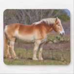 Working Horse Mousepad