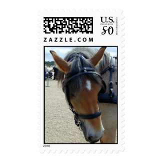 Working Horse Postage