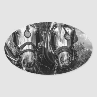 Working Horses Oval Sticker