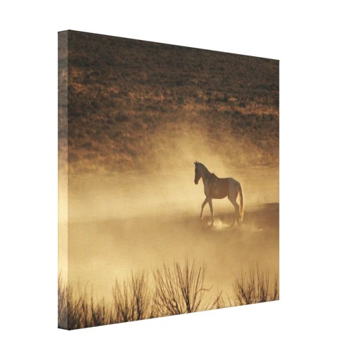 Working Up the Ranks Canvas Print