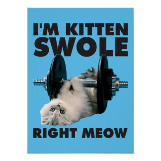 Workout - Cat - I'm Kitten Swole Right Meow Poster
