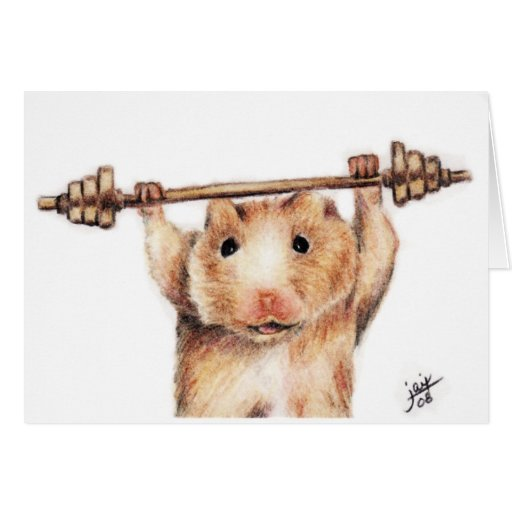 Workout (Hamster) Cards