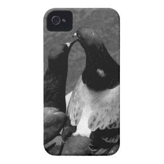 world best photographer 2016 photo design iPhone 4 Case-Mate cases
