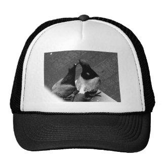 world best photographer 2016 photo design trucker hat