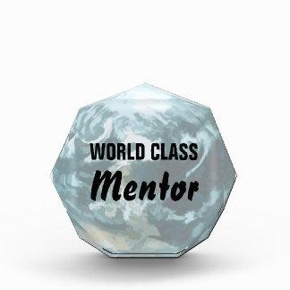 World Class Mentor Award