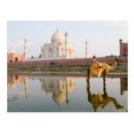 World famous Taj Mahal temple burial site at Post Card