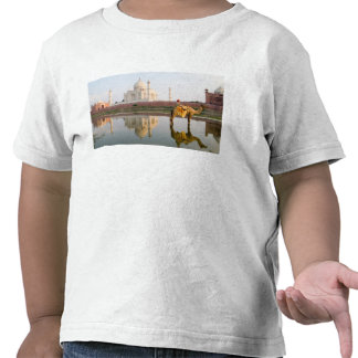 World famous Taj Mahal temple burial site at Tee Shirts