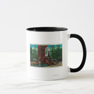 World Famous Tree House, Lilley Redwood Park Mug