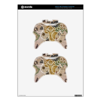 World Map - Africa Xbox 360 Controller Skins