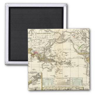 World Map of Diseases Fridge Magnet