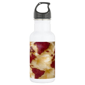 WORLD MAP ON APPLE SURFACE WATER BOTTLE