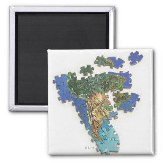 World Map, South America 2 Fridge Magnets