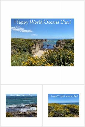 World Oceans Day: June 8