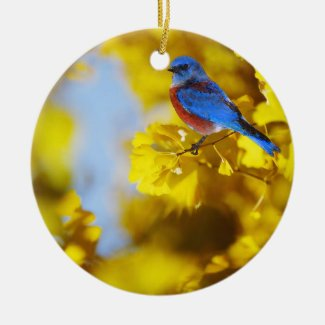 World Of A Bluebird Ornament