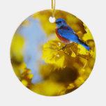 World Of A Bluebird Ornament