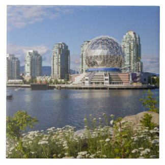 World of Science, Vancouver, British Columbia, Tile