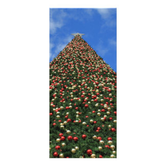World s Largest Christmas Tree Rack Card
