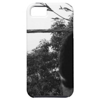 world top modern photographer 2020 iPhone SE/5/5s case