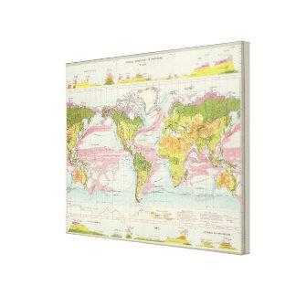 World vegetation & ocean currents Map Canvas Print