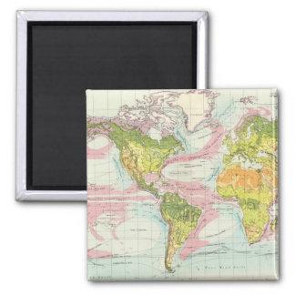 World vegetation & ocean currents Map Magnet