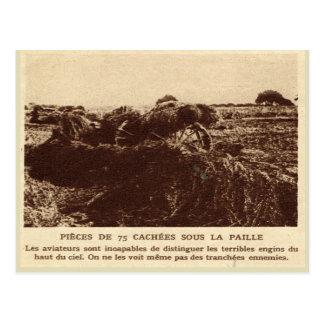 World War I, France,  Guns hidden in the hay Postcard