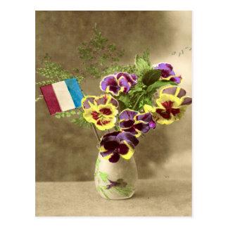 World War I, France,  Pansies for remembrance Postcard