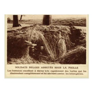World War I, France, Soldiers hidden in the hay Postcard