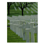 World War II cemetery, Memorial Day Postcard