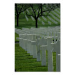 World War II cemetery, Memorial Day Poster
