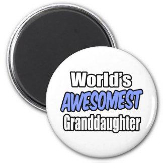 World's Awesomest Granddaughter Magnet