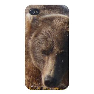 World's Best Dad Brown Bear I speck Case