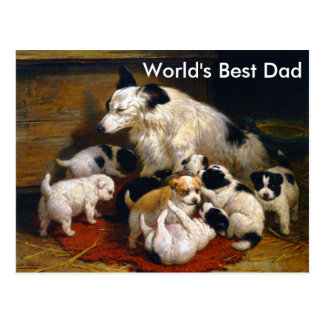 World's Best Dad Sheepdog and Puppies Postcard