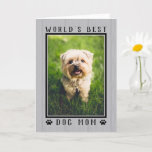 World's Best Dog Mom Rustic Mother's Day Photo Card