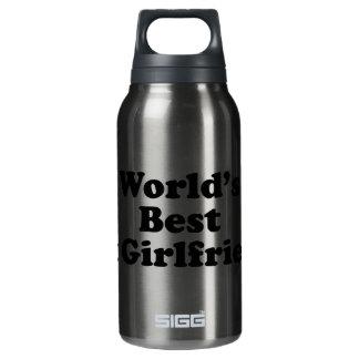 World's Best Ex Girlfriend Insulated Water Bottle