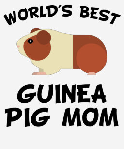 912568db World's Best Guinea Pig Mom T-Shirt