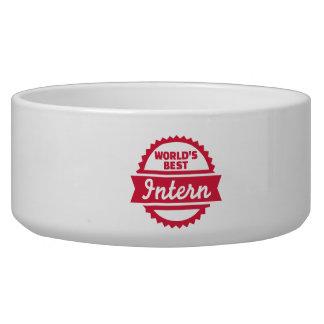 World's best Intern Dog Water Bowls